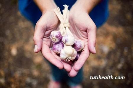 Ăn tỏi giúp cải thiện chức năng xương khớp