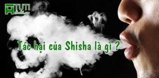 Tác hại của shisha là gì